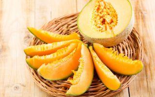 Как помогает дыня при панкреатите?