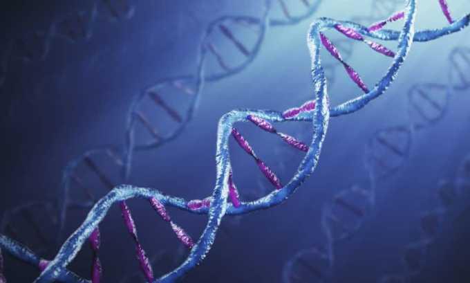 Генетическая предрасположенность к заболеваниям поджелудочной железы - причина возникновения панкреатита