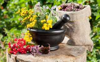 Правильное восстановление поджелудочной железы народными средствами