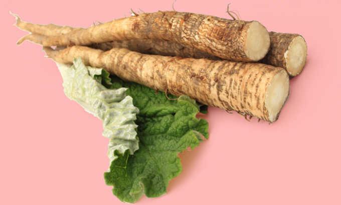 Одним из компонентов травяного лечебного сбора является корень лопуха