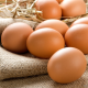 Яйца и другие продукты при панкреатите
