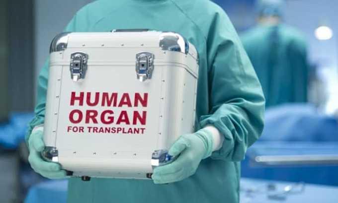 Увеличить количество функционирующих бета-клеток позволяет трансплантация