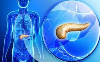 Как определить, повышена ли эхогенность поджелудочной железы?