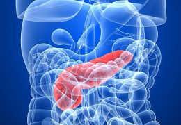 Что представляет собой дисфункция поджелудочной железы, ее симптомы и лечение