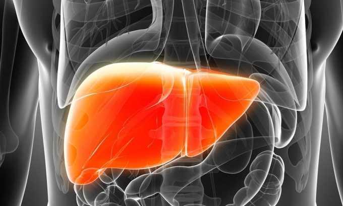 Болезни печени - причина диффузного изменения структуры паренхимы