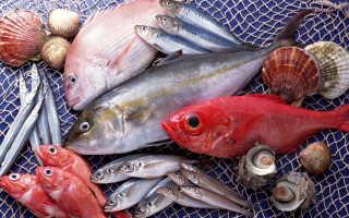 Речная и морская рыба при панкреатите: как выбирать и готовить?