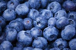 Польза ягод черники при липоматозе