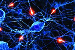 Нарушение нервной системы при заболевании