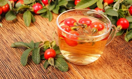 При панкреатите рекомендуется пить отвар шиповника