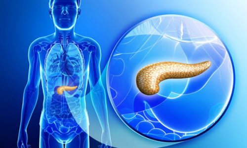 Дисфункция поджелудочной железы является патологическим процессом, часто встречающимся в гастроэнтерологической практике
