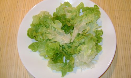 Часто камни в поджелудочной железе возникают у женщин, которые придерживают диеты с низким содержанием питательных веществ или полностью отказываются от еды