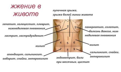 Жжение в животе - распространенное явление как у мужчин, так и у женщин, свидетельствующее о развитии в брюшной полости патологических процессов