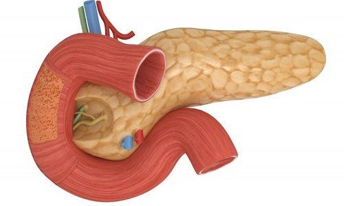 Поджелудочная железа (ПЖ) выполняет функции внешней и внутренней секреции (экзокринная и эндокринная)