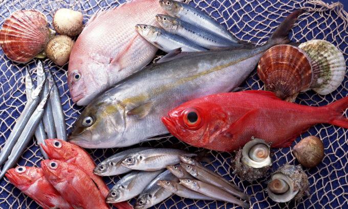 Употребление рыбы при правильной диете приветствуется, недопустимо только включать в рацион слишком жирную, такую как селедка соленая и маринованная, палтус, форель